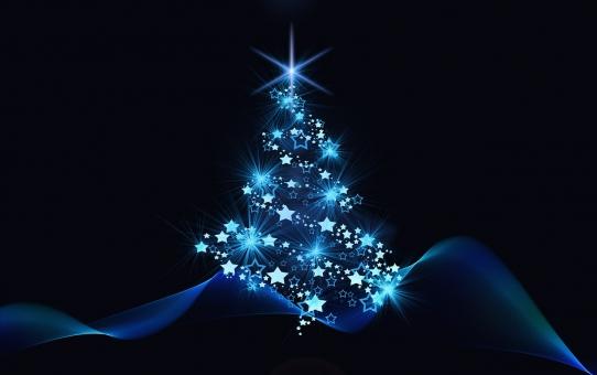 Unser Weihnachtsmenü